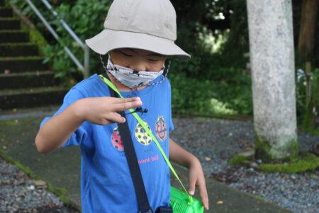 小学生に大人気!大自然の中で昆虫採集!