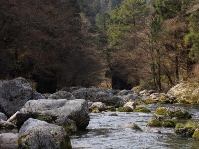 小田深山に春がやってきた!